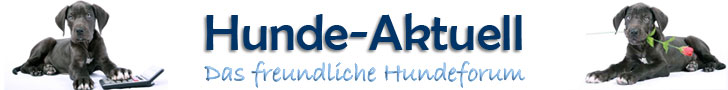 www.hunde-aktuell.de